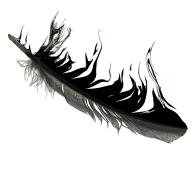 Faithless Logo
